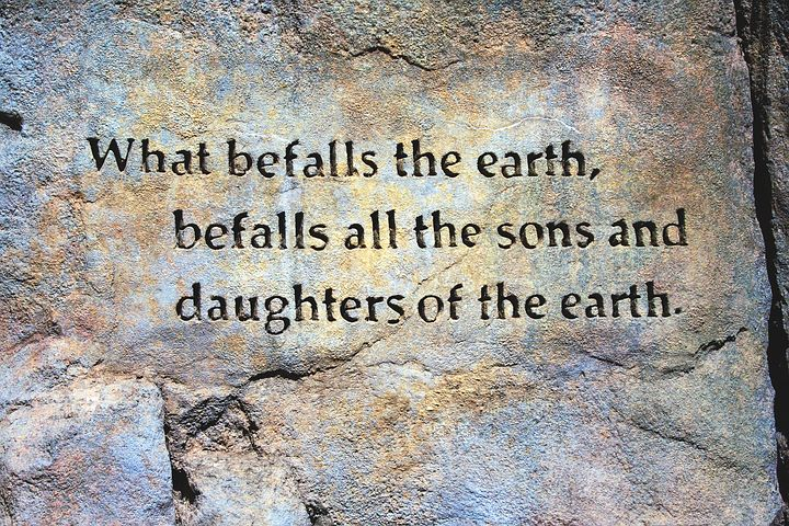 befall-the-earth-quote-1460570__480